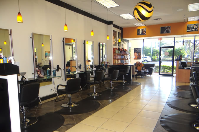 The Walk Professional Services  Hair Color Concepts